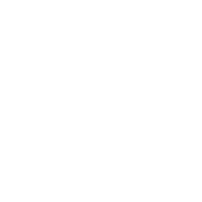 Freebirds contrôle sa présence numérique